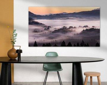Mystieke mist boven Bennau, Kanton Schwyz van Pascal Sigrist - Landscape Photography
