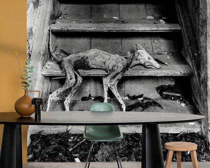 Sfeerimpressie behang: Gemummificeerde hond van Frank Herrmann