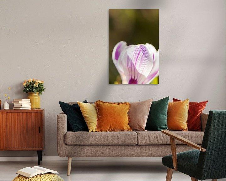 Sfeerimpressie: lentekleuren   bloemenkunst     macrofoto van krokus, oranje meeldraden in een bloem   fine art foto van Karijn   Fine art Natuur en Reis Fotografie