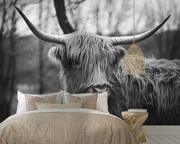 Schotse Hooglander portret in zwart-wit van Shotsby_MT
