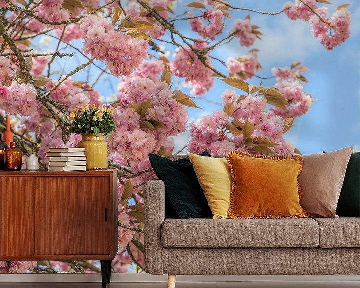 Beispiel fototapete: Blühende Prunus Serrulata (Japanische Kirsche ) von Mieneke Andeweg-van Rijn