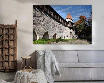 Mägdeturm, Turm  der Stadtmauer, Museum, Tallinn, Estland, Europa