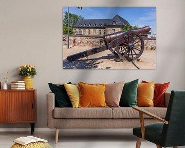 Alte Kanone, Alter Zoll, Bonn, Noordrijn-Westfalen, Duitsland