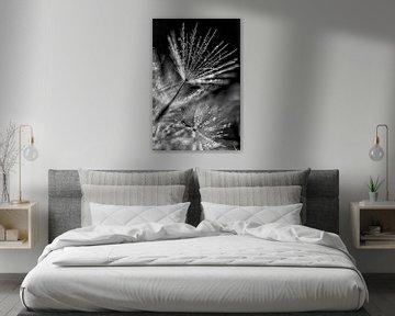 Löwenzahn mit Bling von Esther van Dijk