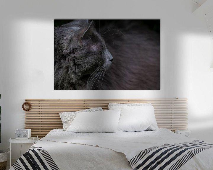 Beispiel: Kopf einer Katze mit Blick zur Seite von Henk Vrieselaar