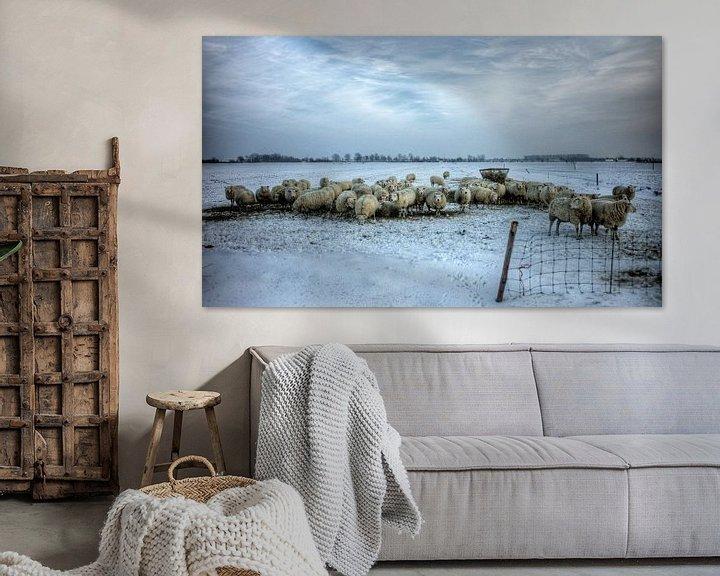Sfeerimpressie: Een koppel schapen in de sneeuw van Henk Vrieselaar
