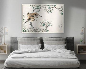 Japanische Wiesenammer und Birnenblüte Illustration von Numata Kashu von Studio POPPY