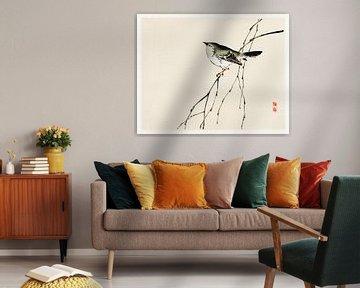 Japanische Vogel-Illustration von Kōno Bairei von Studio POPPY