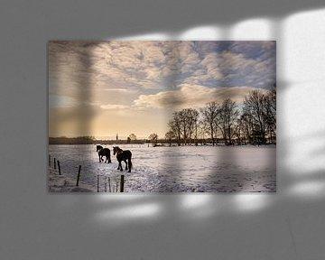 Zwei Pferde laufen durch eine verschneite Wiese kurz nach Sonnenaufgang in Steenwijk, Niederlande von Dafne Vos