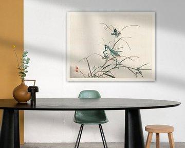 Grashüpfer Japanische Illustration Kōno Bairei (1844-1895). von Studio POPPY