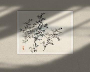Bamboo von Kōno Bairei (1844-1895). von Studio POPPY