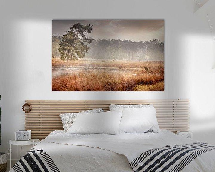 Sfeerimpressie: Mistige ochtend op de Beegderheide van Peschen Photography