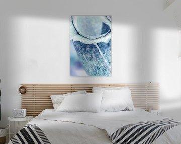 IJsblauwe winter van Lotte Veldt