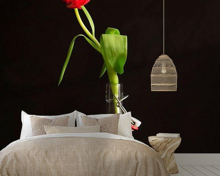 Beispiel fototapete: Gefüllte Tulpe von Anette Jäger