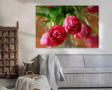Gefüllte Tulpen von Thomas Jäger