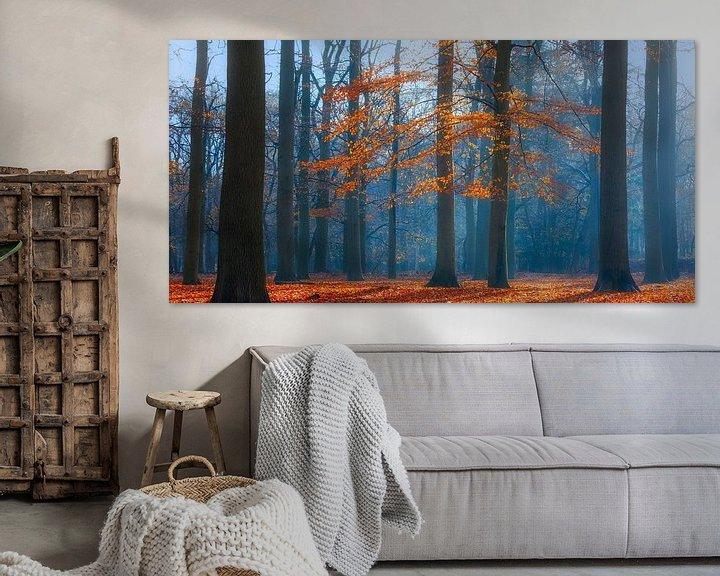 Sfeerimpressie: Herfstochtend in het beukenbos, Utrechtse Heuvelrug, Nederland van Sjaak den Breeje Landschapsfotografie