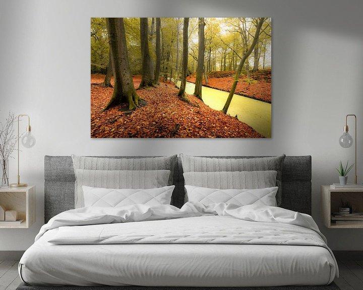 Beispiel: Herbstfarben im Park Clingendael in Den Haag von Rob IJsselstein