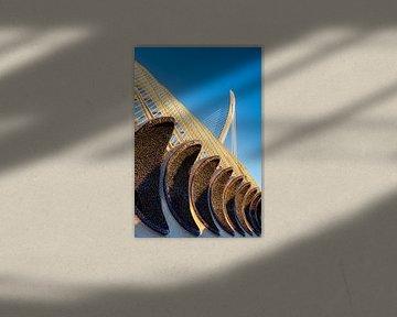 Mosaik Fassade an der Ciudad de las Artes y las Ciencas in Valencia Spanien von Dieter Walther