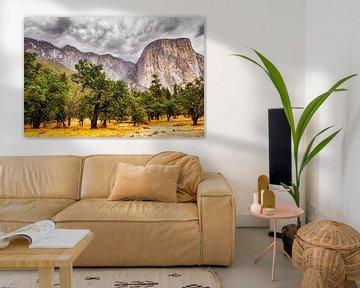 Yosemite National Park Californië Vallei en el Capitain Landschap van Dieter Walther