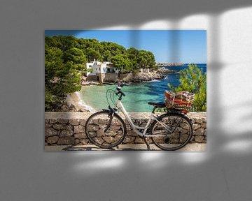 Cala Gat zwembaai in Mallorca in Cala Rajada van Animaflora PicsStock