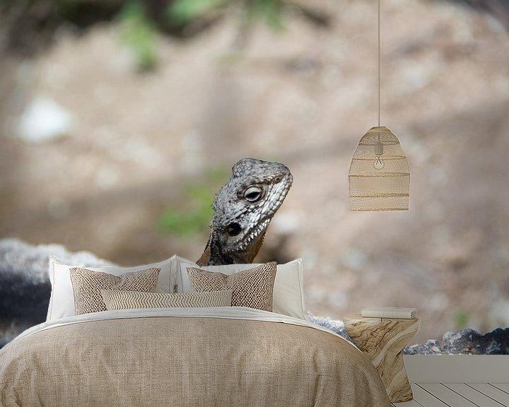 Beispiel fototapete: Salamander von Daniël Smits