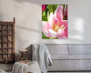 rosa Tulpe im Frühlingsstrauß von Delphine Kesteloot