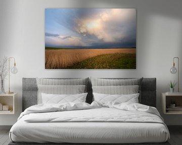 Mooie wolkenlucht in de Arkemheen polder van Margreet Riedstra
