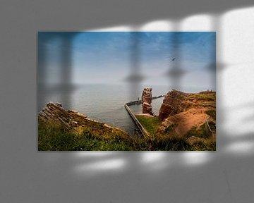 Lange Anna auf Helgoland in der Nordsee von Animaflora PicsStock