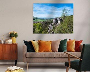Blick über die Fränkische Schweiz mit Felsen von Animaflora PicsStock