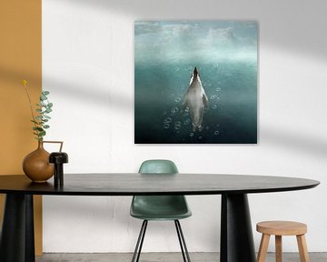 Pinguïn Aqarius