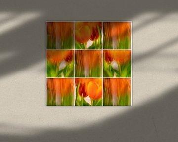 Tulpen-Collage | A von Rob van der Pijll