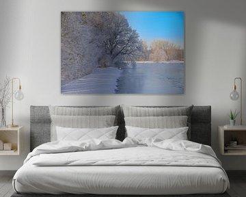 Bevroren dysenterie van Bernhard Kaiser