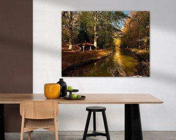 Herbstfarben in Elstwout. von Apple Brenner