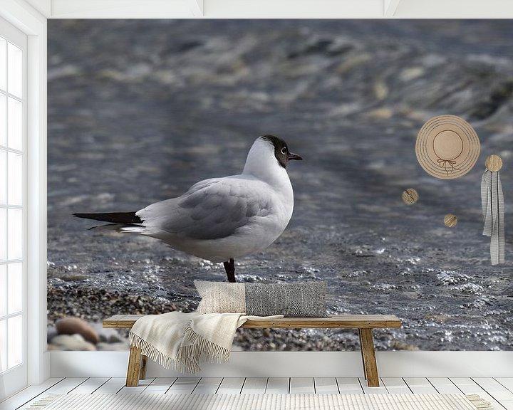 Beispiel fototapete: Möwe 4 von Miroslav Plahusch