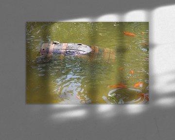 wijnton met kikker en goudvissen von Vincent Oostvogel