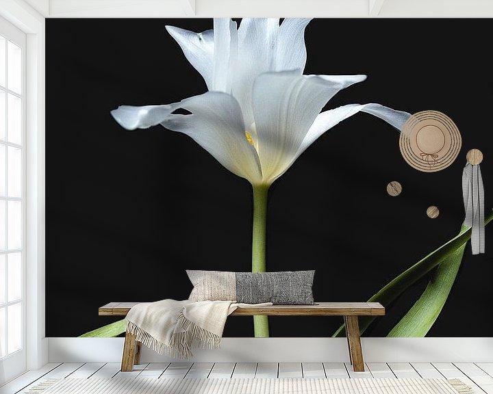 Beispiel fototapete: Weiße Tulpe von Ineke VJ