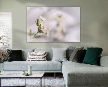 bloemen part 82 van Tania Perneel