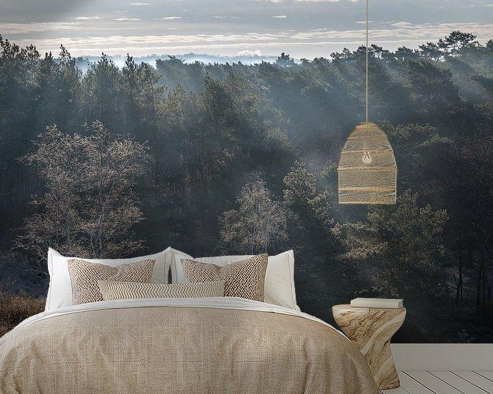 Beispiel fototapete: Ein strahlender Sonnenaufgang auf der Heide von John van de Gazelle