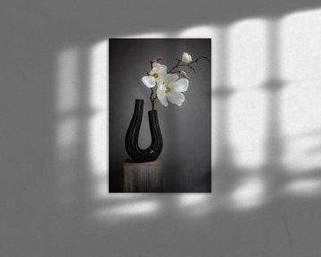 Stillleben Orchidee von Danny den Breejen