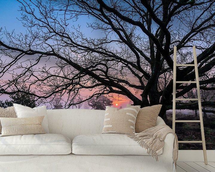 Sfeerimpressie behang: Early sunrise van Wilma Wijnen