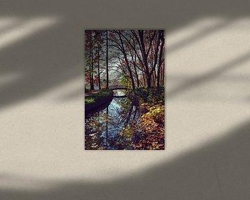 L'automne le plus joli dans le Parc de la Tête d'Or, à Lyon sur Carolina Reina