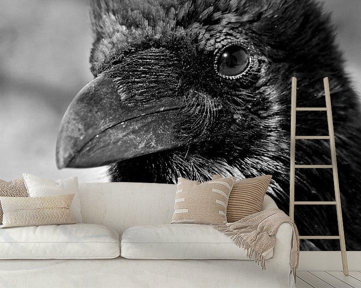 Beispiel fototapete: Porträt einer Krähe in den Vereinigten Staaten von Carolina Reina