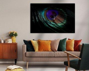 A travers l'œil d'une plume de paon sur Marieke Tegenbosch