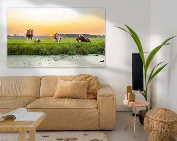 Koeien in zonsondergang van Ricardo Van diggelen