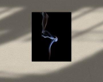 Rook 7 van Silvia Creemers