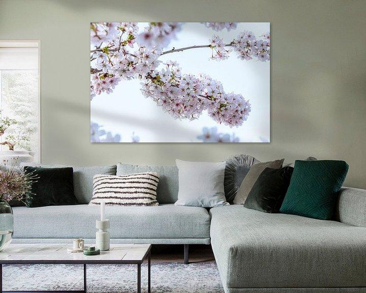 Sfeerimpressie: Bloesem van de kersenboom, lente! van Rietje Bulthuis