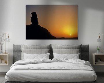 hund in der weisse wüste von Stefan Havadi-Nagy
