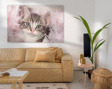 Niedliche Cypers Kätzchen mit rosa Flaum von Dagmar Hijmans