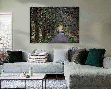 oude kasteelweg van Edgar Schermaul