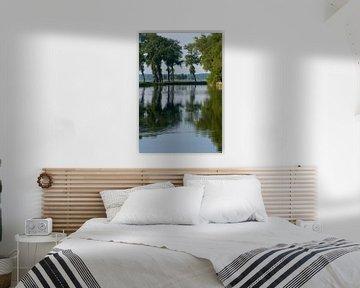 Een vaarwater in Zeeland met weerspiegeling van bomen van Louis en Astrid Drent Fotografie